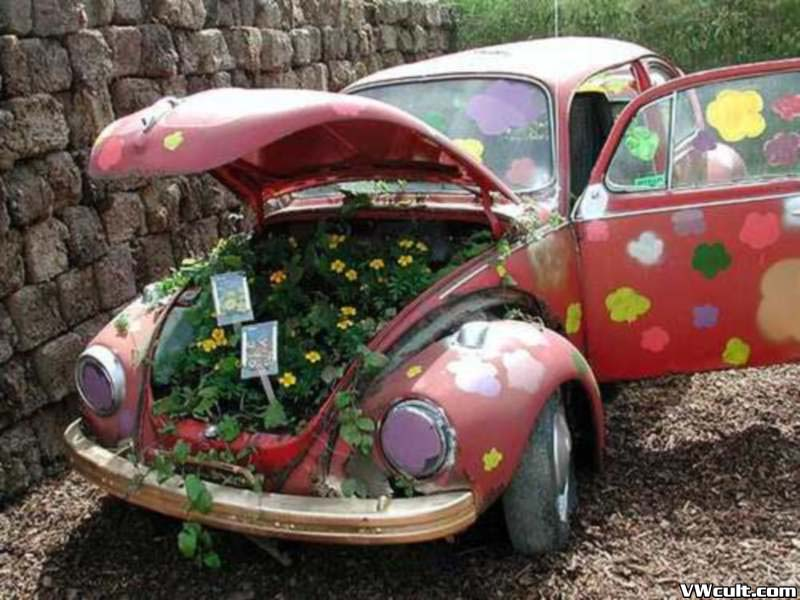 Volkswagen and flowers